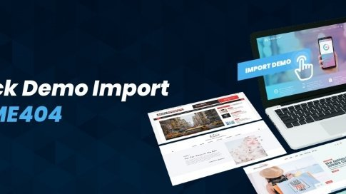 Theme one click demo import